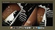 Projekt graficzny dla strony www Flash